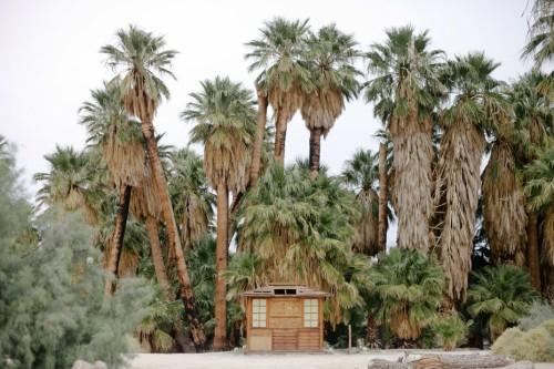 Freunde-von-Freunden-Joshua-Tree-park-desert-trip-claire-cotrell-laurence-spencer-king-001b-930x620