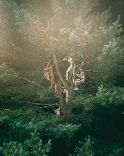 1397142350698_ryan-mcginley-tree-no-three-2003