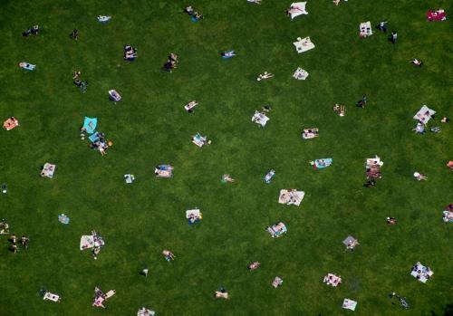central-park-lawn